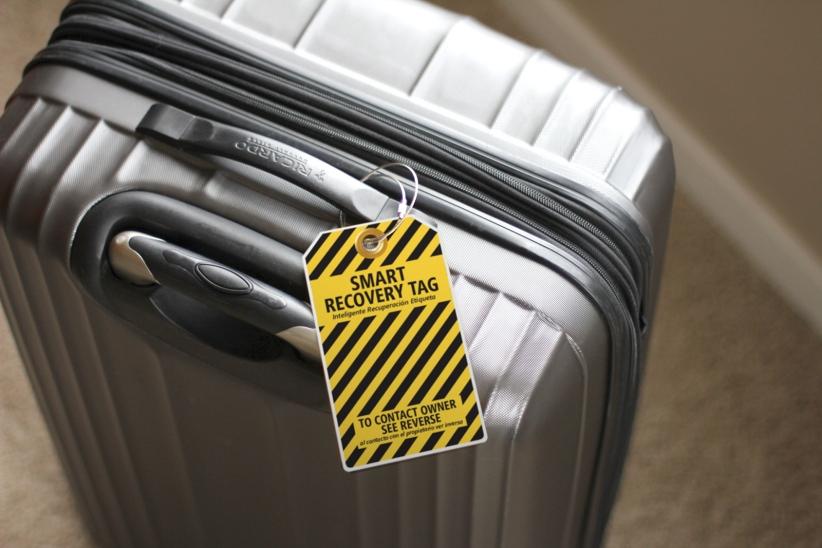 Bumble Bee MEGA on gray suitcase RGB